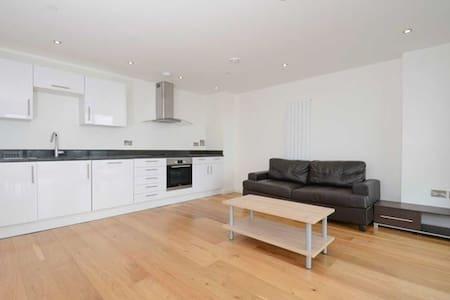 Zone 1 modern, view of London Eye - London - Apartment