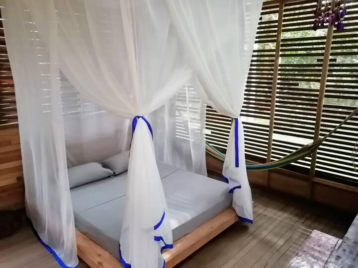 1. AMAZONIC REFUGE - Comfortable & Eco-friendly