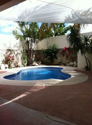 Casa Canuck- Pool & Much More - Cozumel - Haus