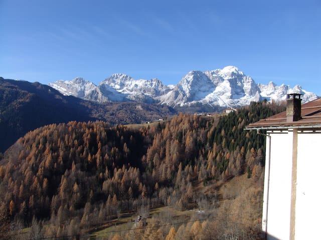 casa vacanze val zoldana (Dolomiti) - Costa di Zoldo Alto - Appartement