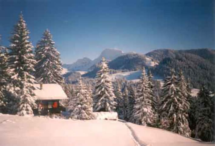 Holidays  in Gruyere/Lake Geneva - Châtel-Saint-Denis - Chalet