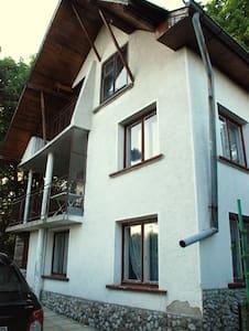 Bear's House - Vratsa