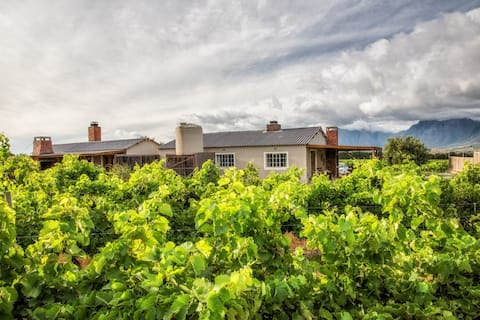 Shiraz - farm cottage in the middle of vineyards
