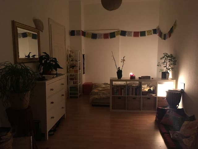 gemütliches 22 qm Zimmer in Altbau-WG - Freiburg im Breisgau - Apartment