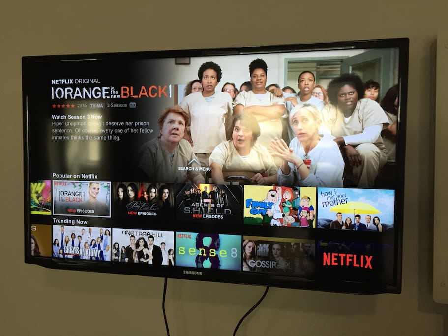 Samsung flat screen smart TV with Netflix.  You can also stream Amazon, Hulu and more if you have an active account.