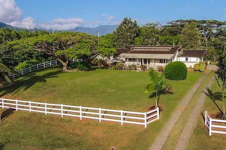 Newly Renovated and Private Studio - Kilauea - House