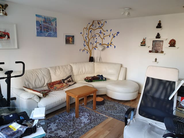 Lovely 1BR with private entrance in Canada Water