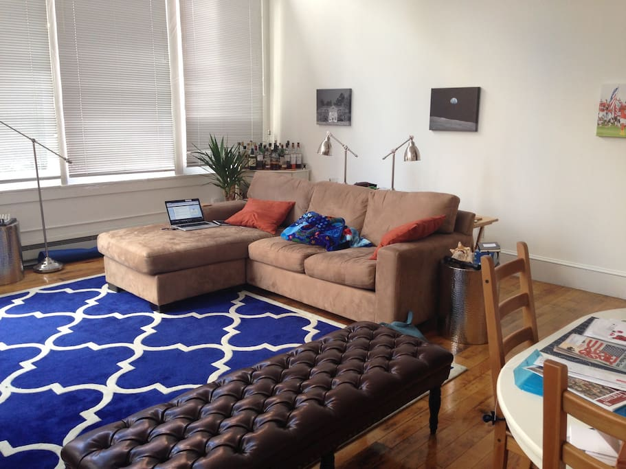 Large couch with pull out sleeper