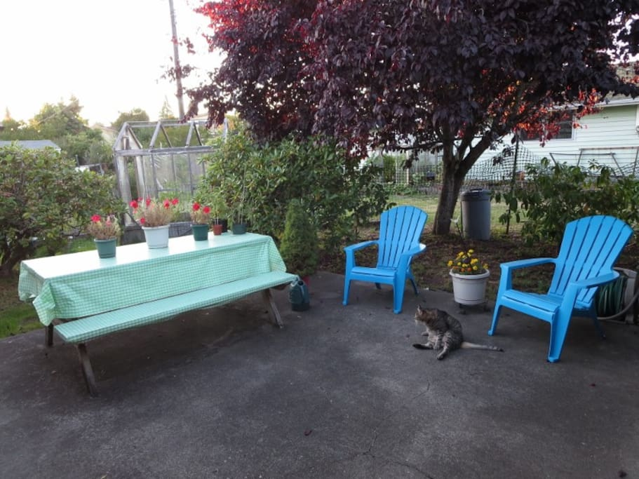 Back patio (BBQ gas grill available).