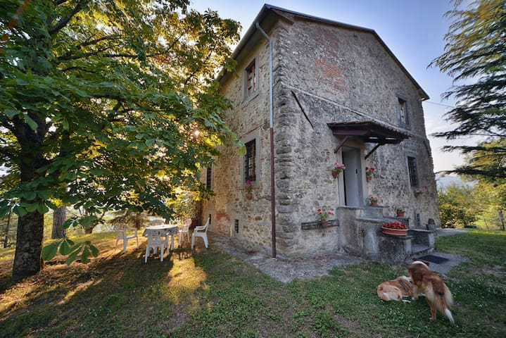 Antica torre nella campagna Toscana - Sansepolcro - Ev