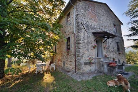 Antica torre nella campagna Toscana - Sansepolcro