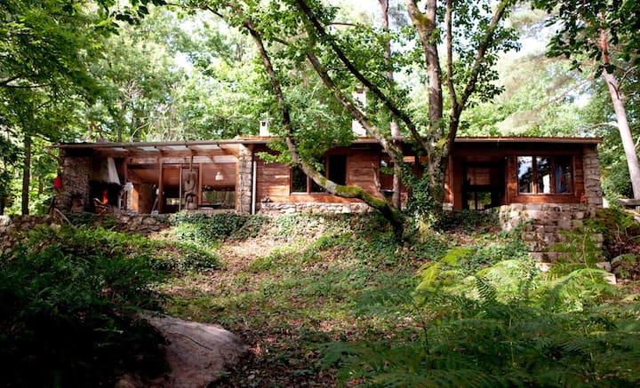 Grande cabane forêt /éco-yogagite/ 6-10 p.