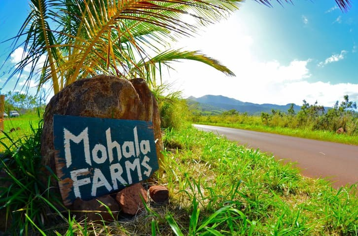 Private Cabin on Organic Farm - Waialua - Chalet