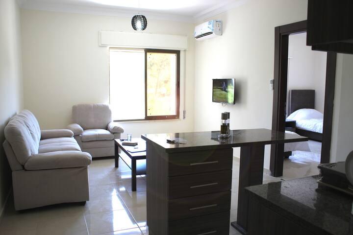 Brand New Modern Apartment in Amman