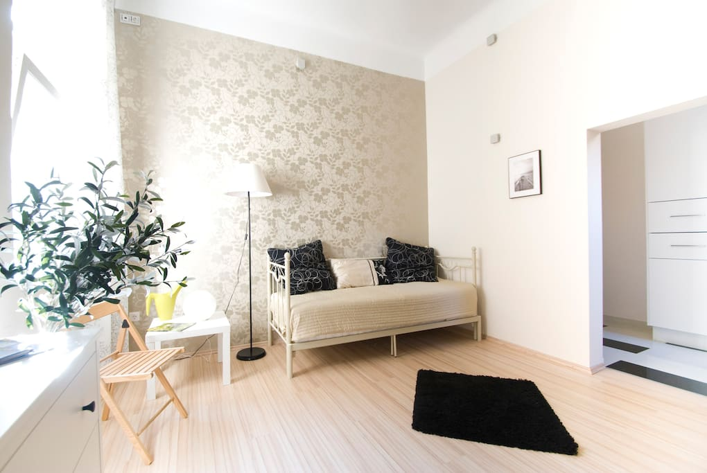 ENTIRE APT for low price in center!