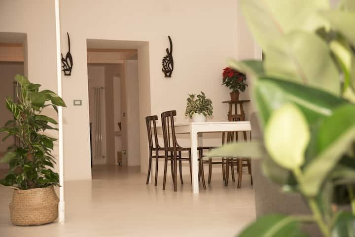 Luxury design apartment-safest Catania city center