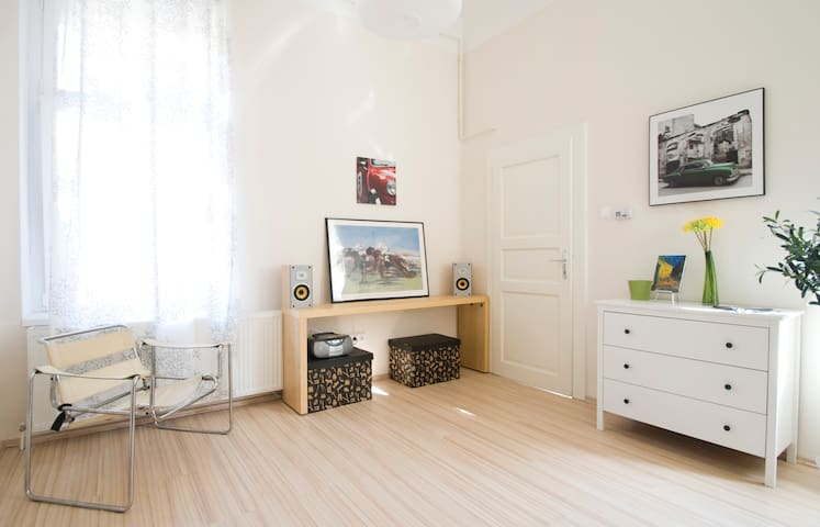 ENTIRE APT for low price in center! - Budapešť - Byt