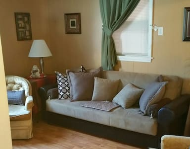 COZY Petite/SPACE 1Sofa-Bed@Living Room - Madison - Bed & Breakfast