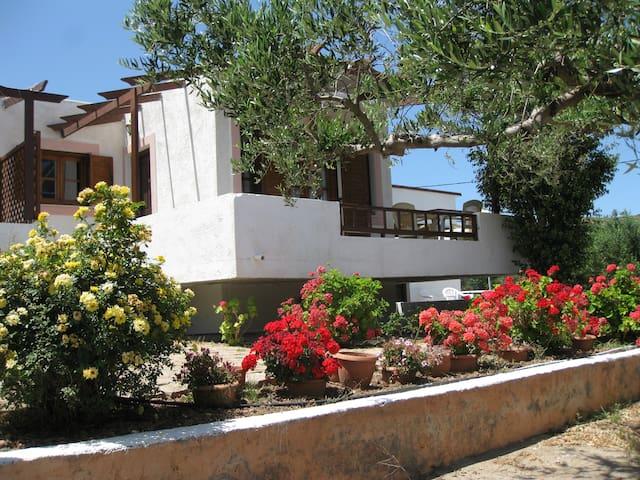 Casa di Mare Apartments Voula - Palekastro - Apartment
