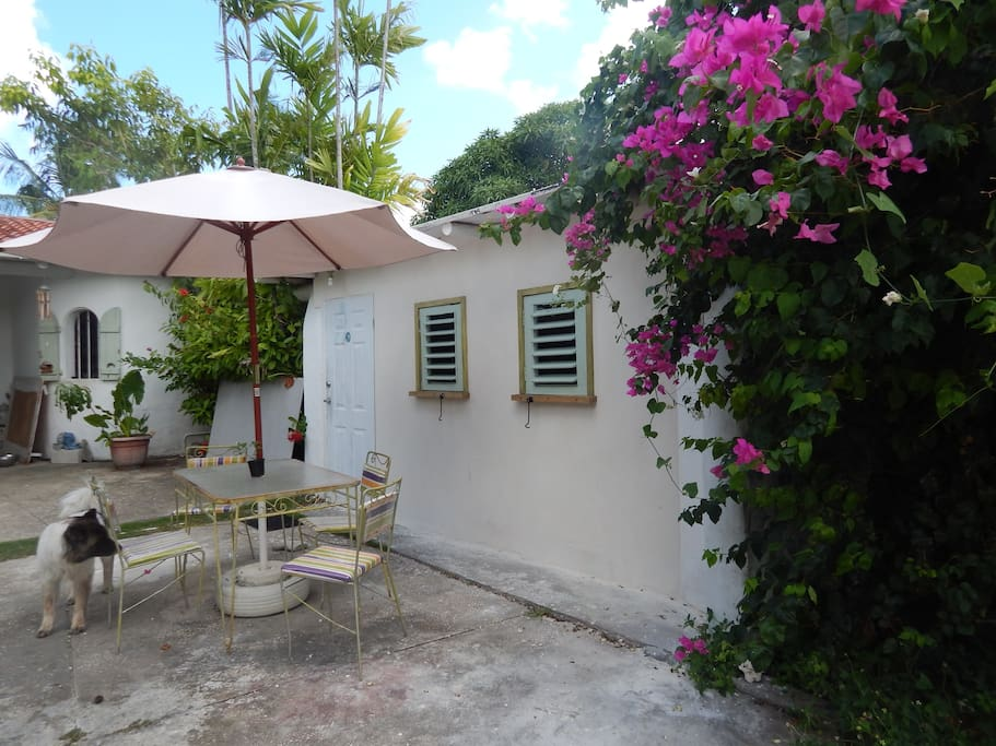 Bed And Breakfast Barbados St Lawrence Gap