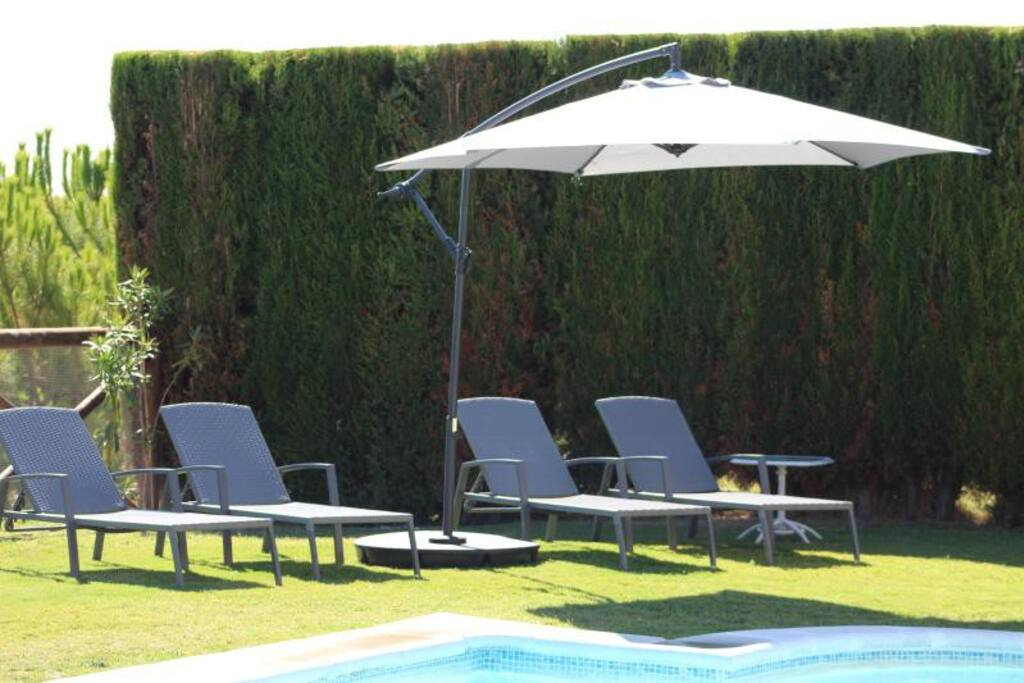 Relax by the pool under the shade in the garden