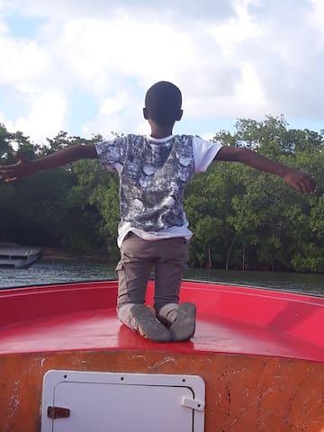 Visite de la mangrove en canot à moteur au départ du canal des Rotours. Patron de pêche selon disponibilité