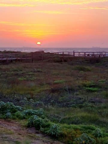 Our board walk & sunrise