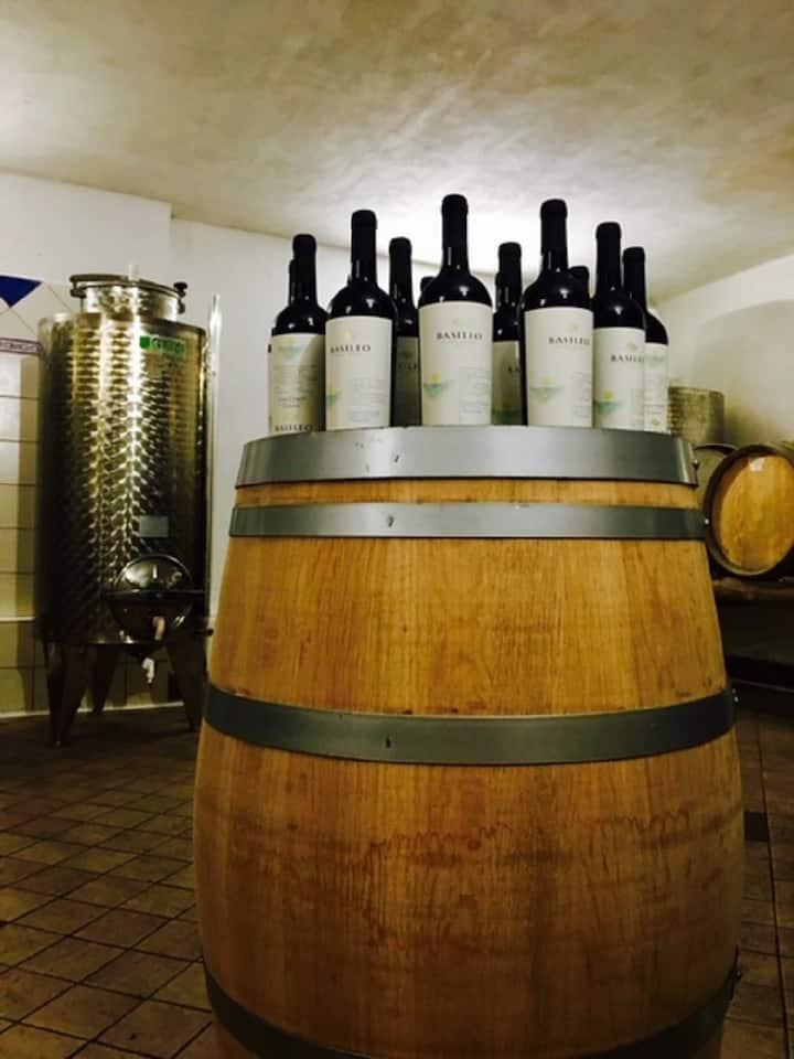 Basileo wine Barriques