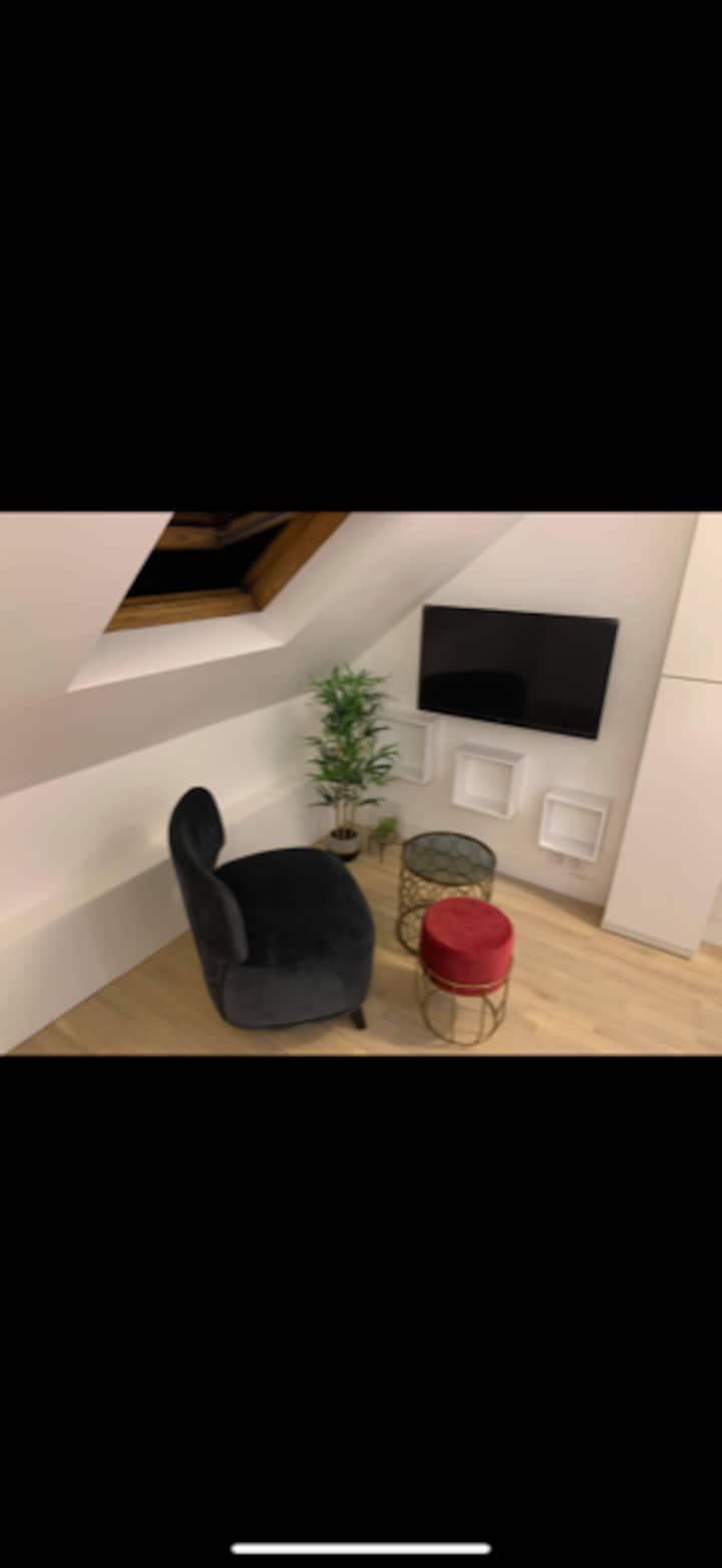 Charmant petit studio au pied du métro Alésia