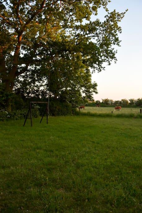 Udsigten fra huset ud over haven og marken