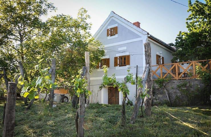 Ház a Szent György-hegyen - Hegymagas - Hus
