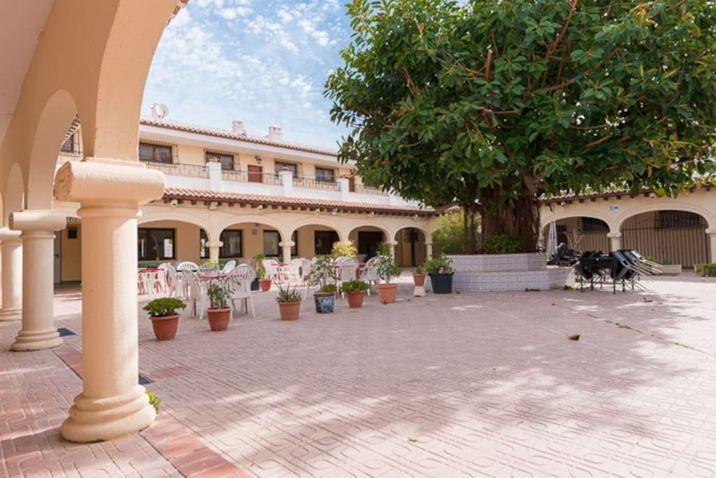 Courtyard at the back of the appartment, and where you can enjoy the terrace