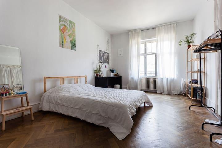 magnifiques chambres lumineuses - Estrasburgo - Apartamento