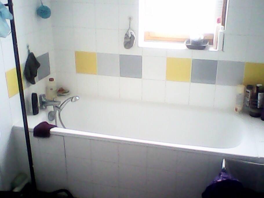 Chambre et salon a louer appartements louer la for Appartement atypique a louer ile de france