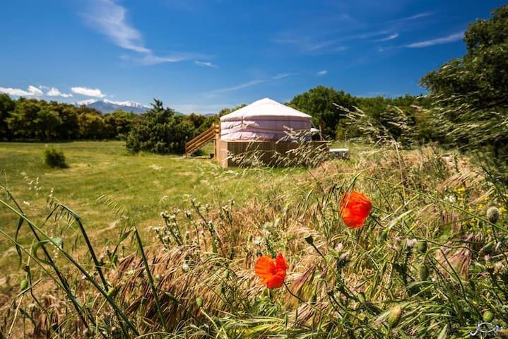 Mongolian Yurt at the Mas Cabanids