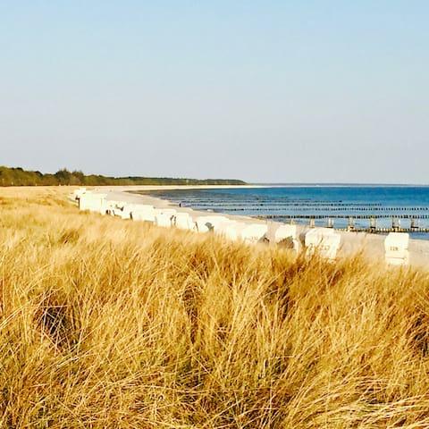 Entschleunigung an d. Ostsee auf Sonnengrundstück! - Zingst - Rumah