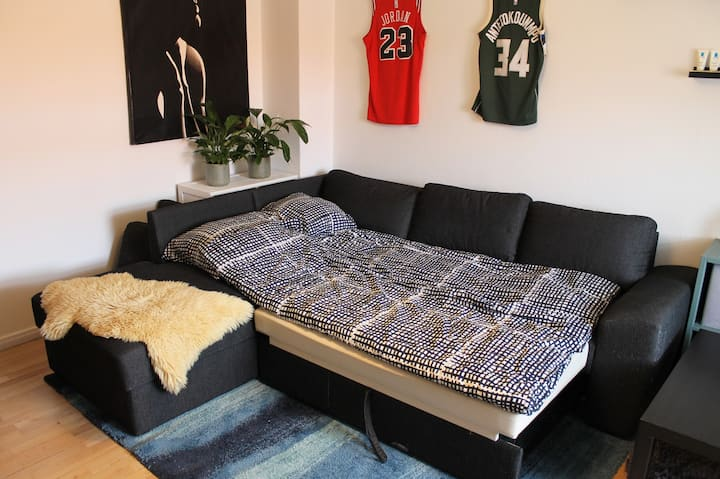 15m2 room  with sleeping couch close to copenhagen