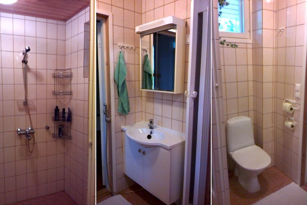 Bathroom: shower, basin and toilet.