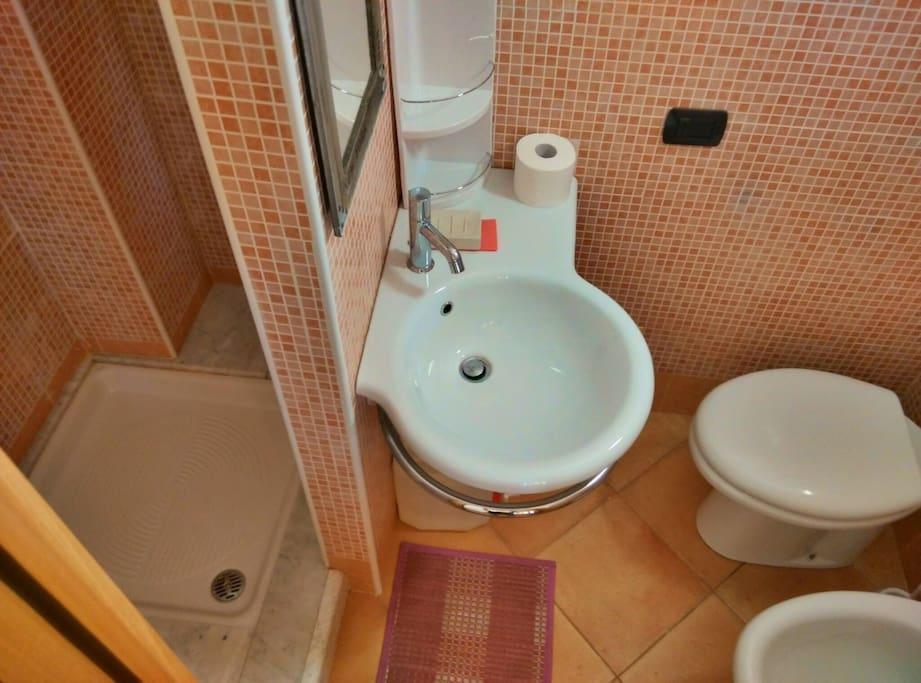 Stanza Rosa: bagno con doccia