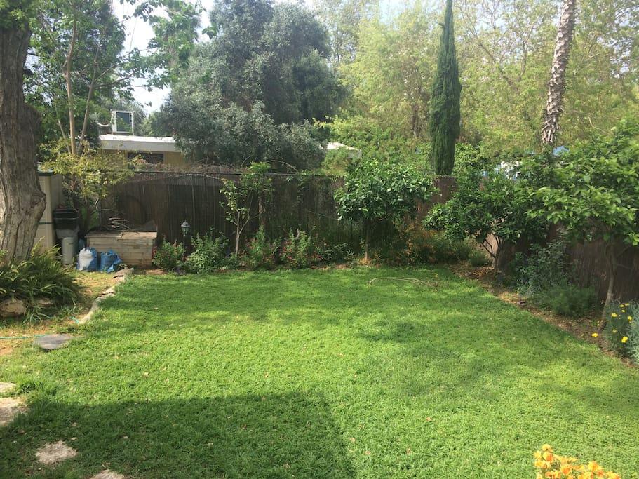 nice garden with small vegetable garden