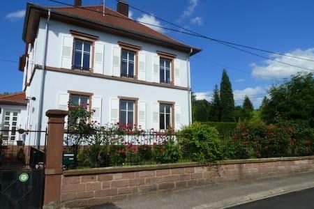 maison de maître - Oberbronn - Willa