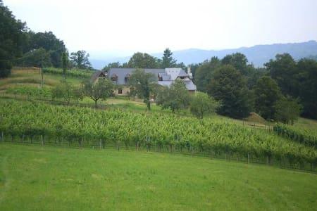 Maison du Causit Aubertin - Aubertin