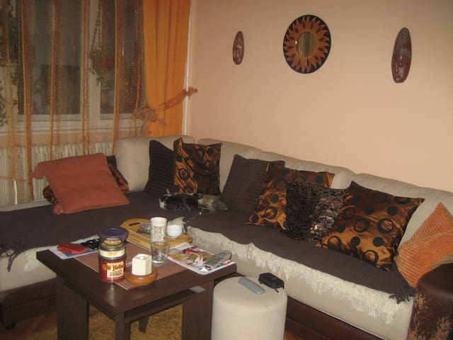 perfect room - Zrenjanin - 公寓