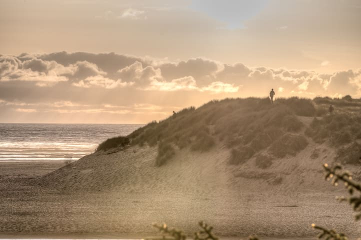 Are you up to climbing the dune?
