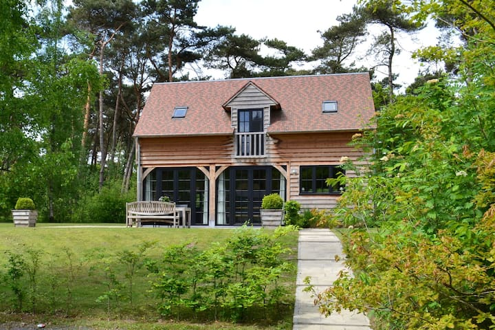 Beautiful wooden lodge with pleasant garden in the forests of Oisterwijk
