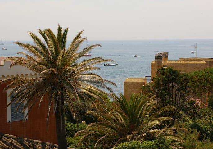 Ricci di mare - Santa Marinella - Villa
