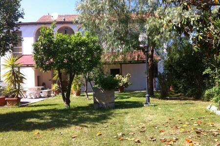 Mare e confort nel verde - Villa Rosa