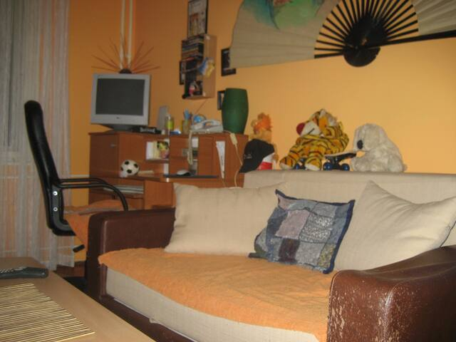 smaller room  - Zrenjanin - 公寓