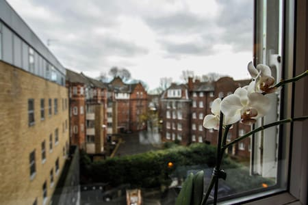 Lovely QUIET room Shoreditch London