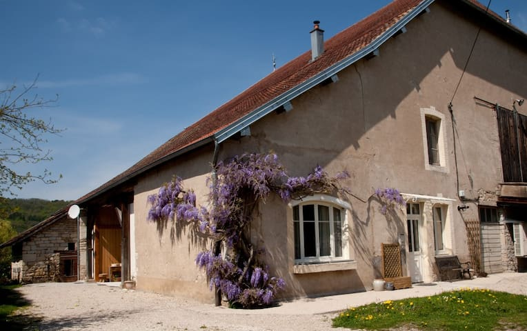 La ferme aux glycines - Osselle - Bed & Breakfast
